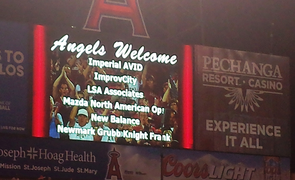 LSA Angel Night