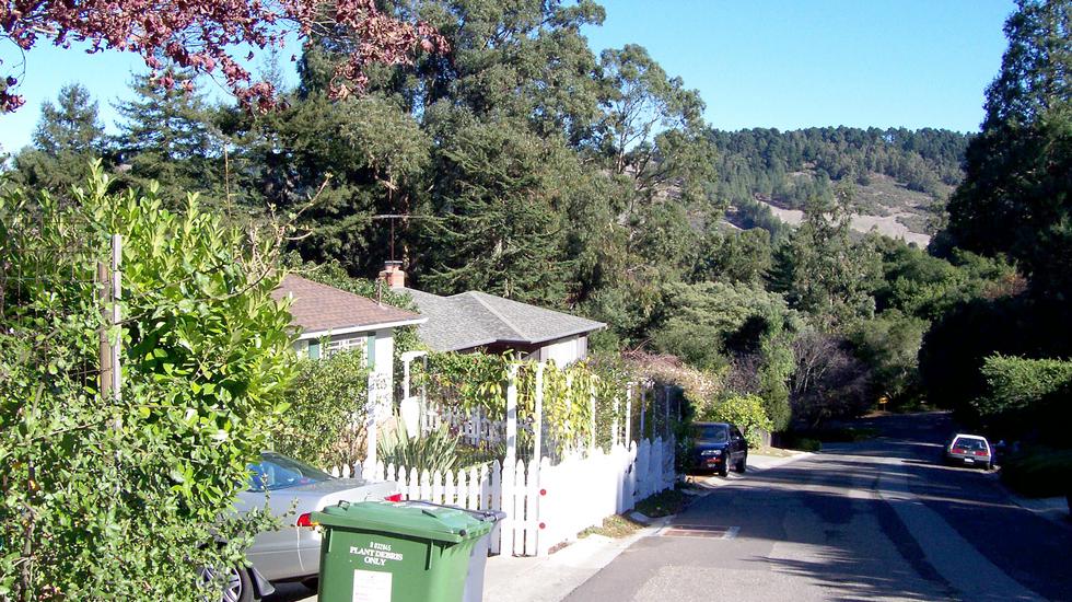 East Bay Regional Park District 980x550