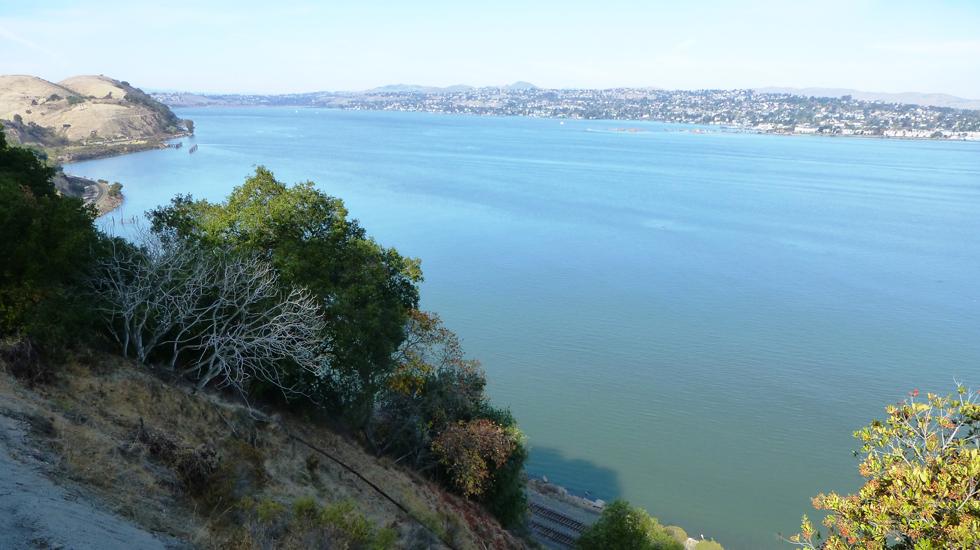 San Fran Trail 2 980x550