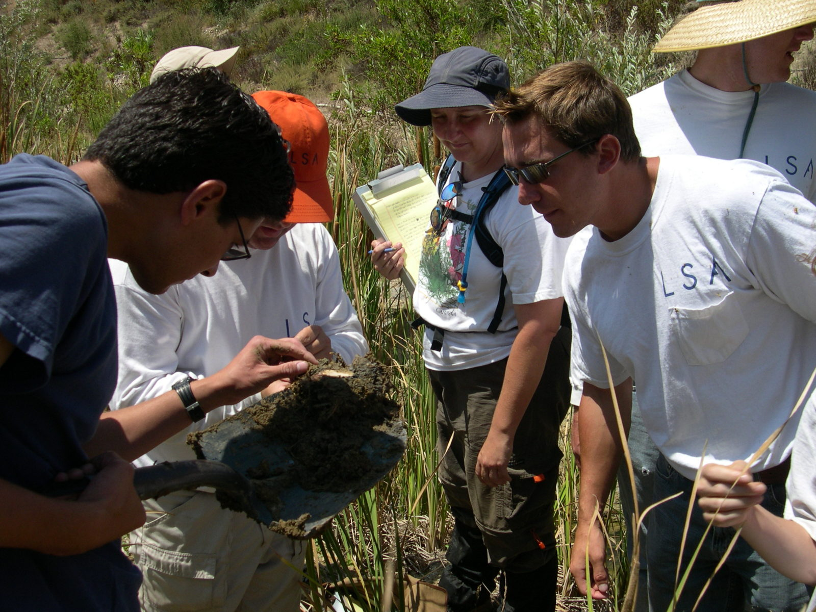 LSA Biologists At Work